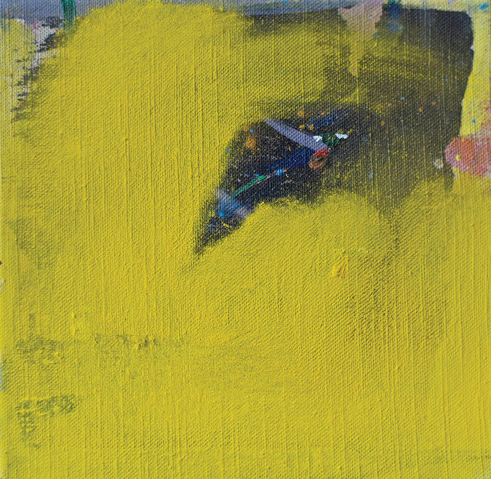 Julia Hinterberger, o.T. (Paradiesvögel), Mischtechnik auf Leinwand, 20 x 20 cm, 2014