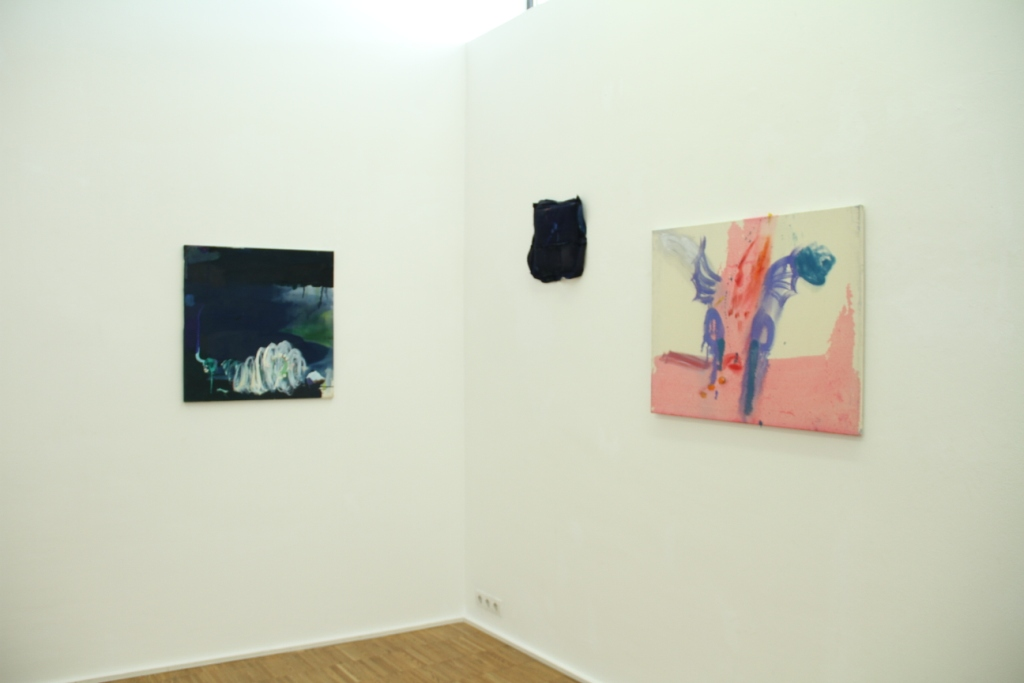 Ausstellungsansicht, Versus I, Galerie MAERZ, Julia Hinterberger, 2014