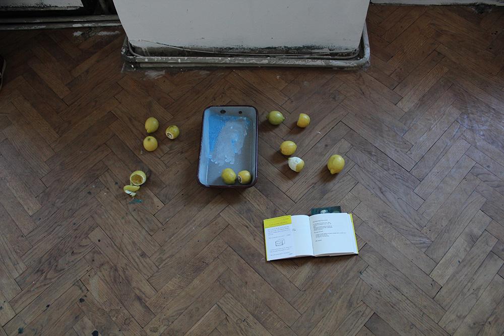 Ausstellungseröffnung Lemon Garden, Julia Hinterberger und Elitsa Velikova, 2015, IMG_5937